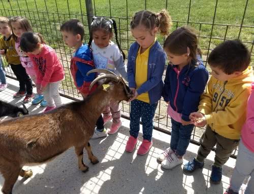 Excursión a la Granja-Escuela
